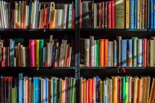 books-bookstore-book-reading-159711-2654