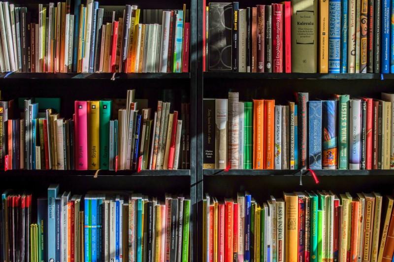 books-bookstore-book-reading-159711-2654-2666