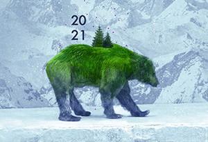 visuel-ours-actu-2722