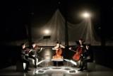quintette pour ombres et violoncelle